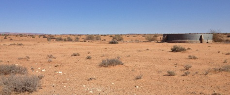 Typical landscape near Pofadder, Bushmanland