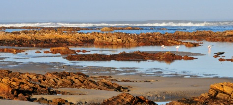 McDougall's Bay, Port Nolloth