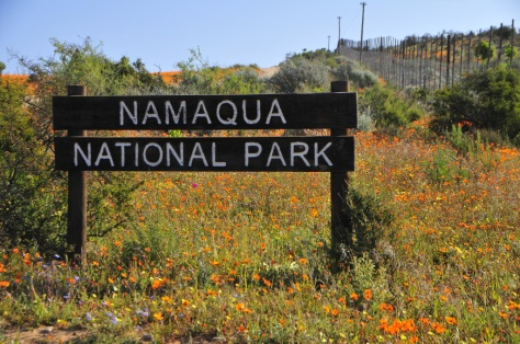 Namaqua National Park (Skilpad Section)