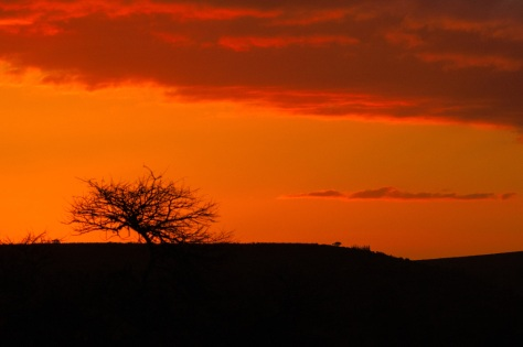 Sunset, Bontebok National Park