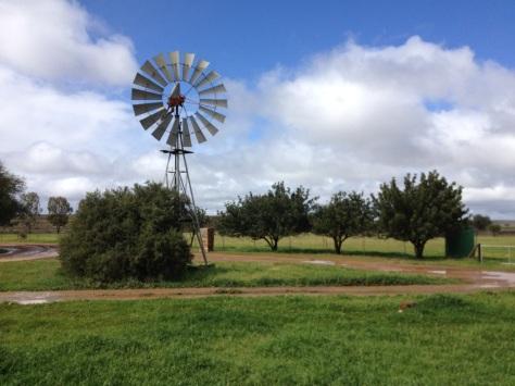 Papkuilsfontein, near Niewoudtville