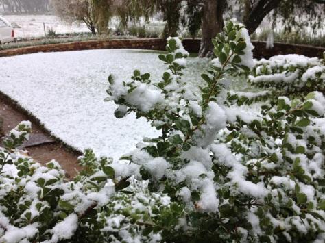 Snow scenes at De Lande