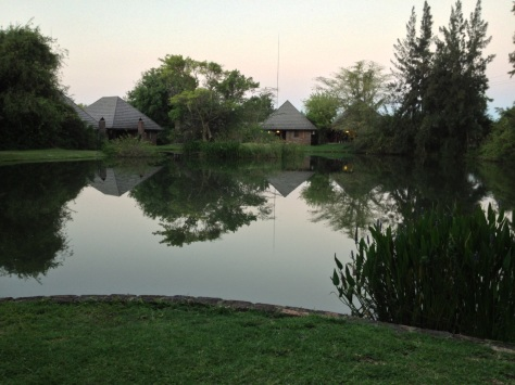 Ngwenya Lodge - View from chalet