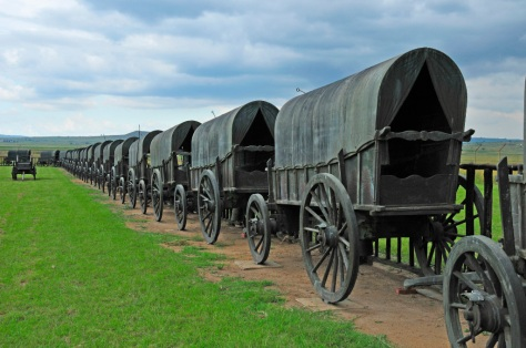 "Bronze wagons form a ""laager"" at the battlefield site"