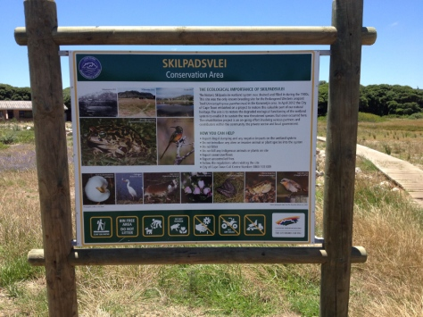 Skilpadsvlei - home to the Western Leopard Frog