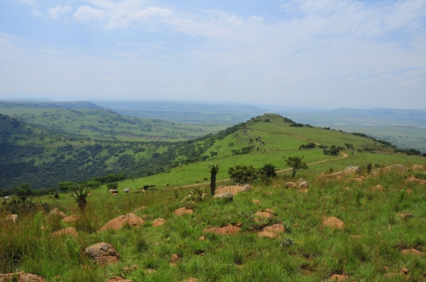 Spioenkop today - a beautiful spot