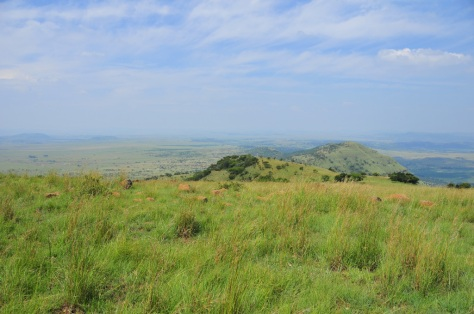 You can see for miles around from Spioenkop