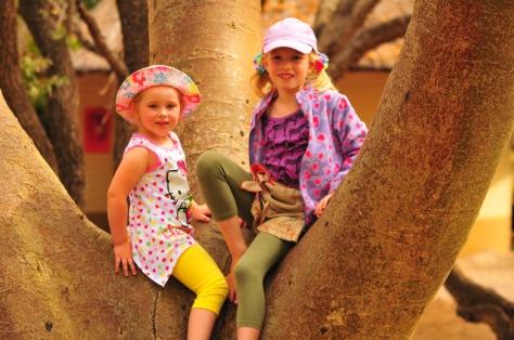 Maia and Megan (Juvenile Leonardii mosselbayi)