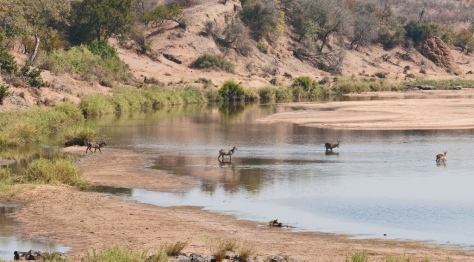 Letaba River