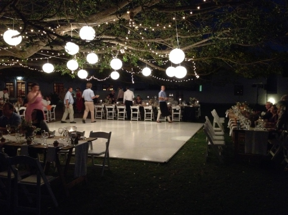 The reception under the grand old Fig tree