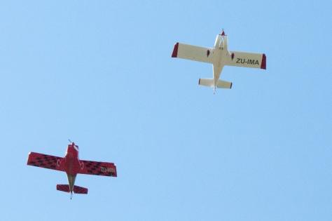Lesser Air-Piper, Camdeboo NP