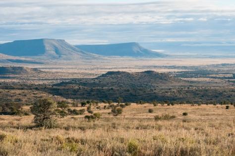 Mountain Zebra National Park