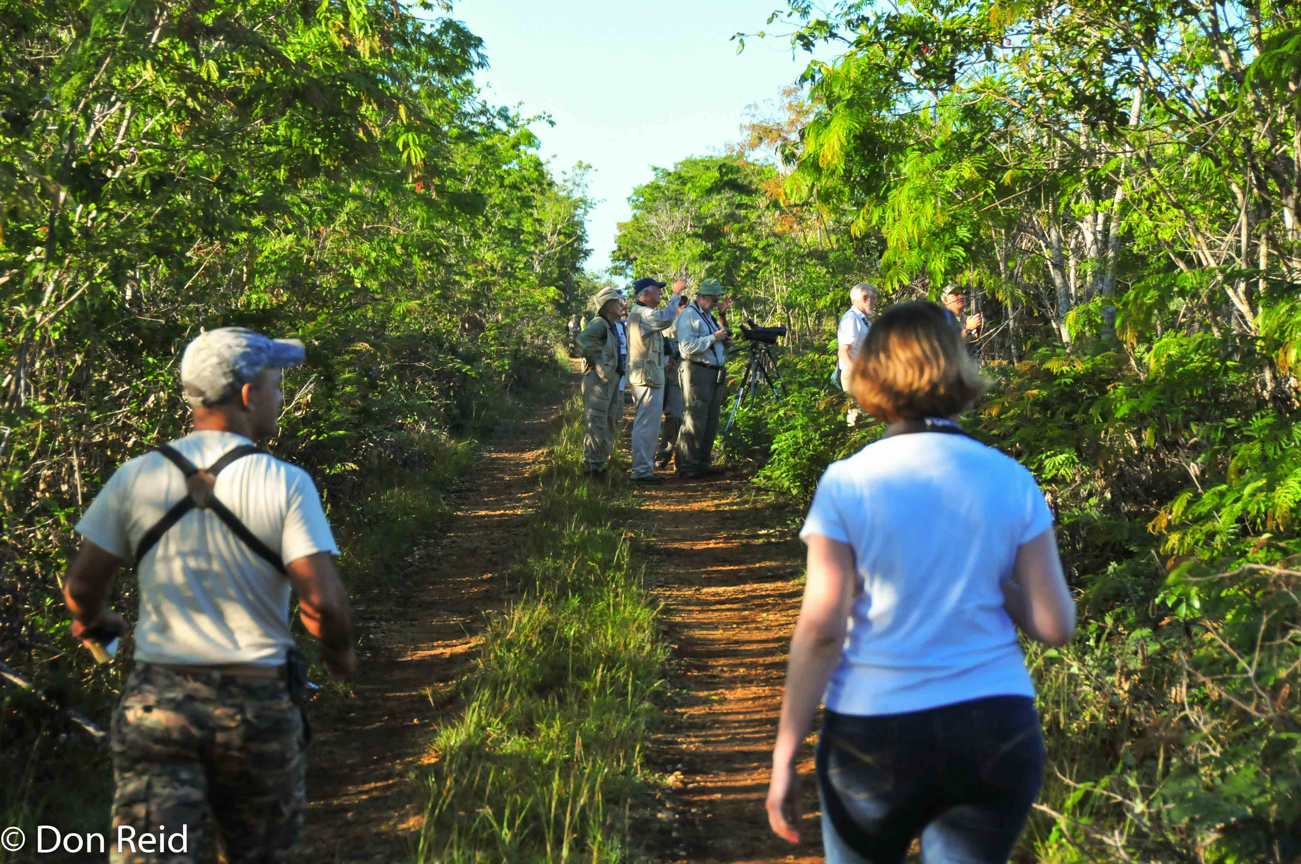 Ernesto and Geraldine about to meet up with an American group of birders in the Zapata Swamps