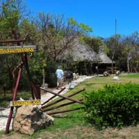A Taste of Cuba - Birding with Ernesto : Varadero