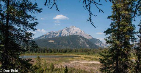 Banff Springs Park