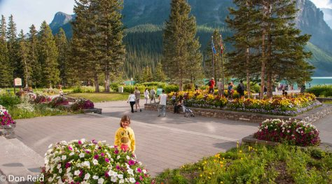 The gardens of the Chateau Hotel at Lake Louise