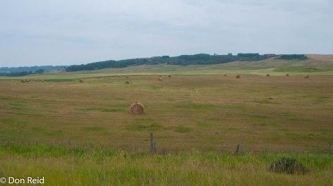 Farmland just outside Calgary