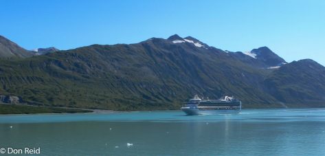 Another cruise ship passes by