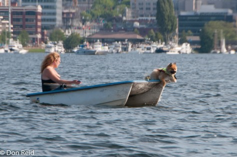 One girl - and a dog - in a boat