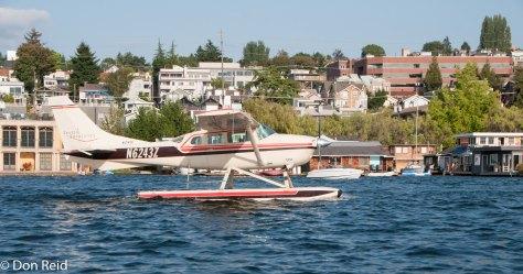 Seaplanes abound
