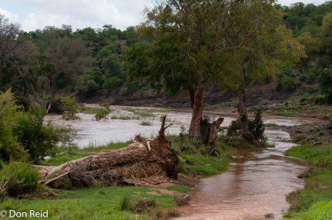 Walk along Luvuvhu River