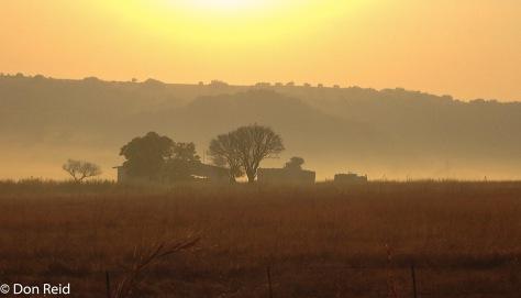 Misty morning, Verena