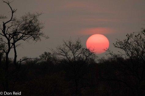 Sunrise near Punda Maria