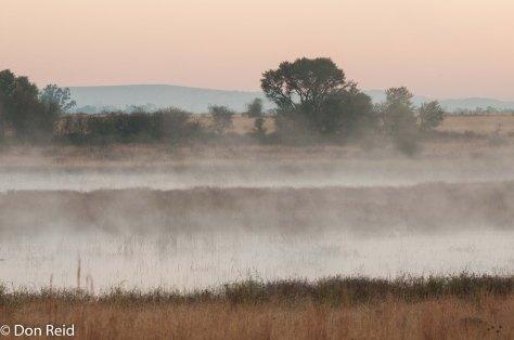 Vlei in the mist, Potchefstroom