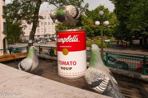 Pop Art in Quebec City, (man, this is for the birds)