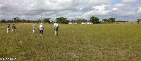 Dry Vlei, Panda - Inhambane road