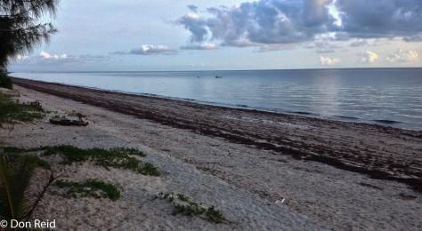 The beach, Inhassoro