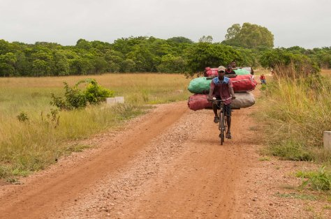 Charcoal transporters, Rio Savane