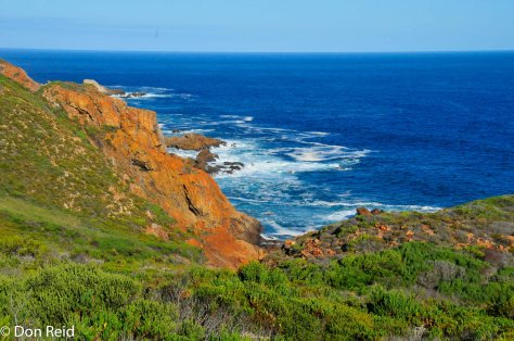 Mossel Bay Golf Estate - nature reserve area