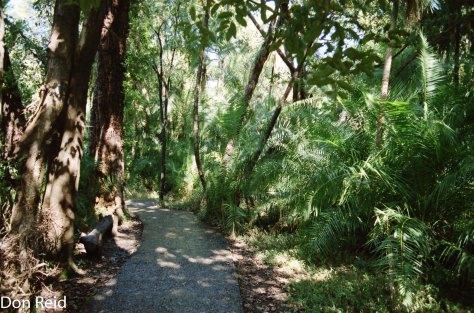 1998 Photo