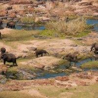A Week in Kruger - Satara to Olifants