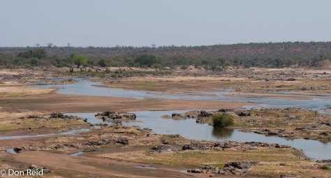 Scene from Olifants river bridge