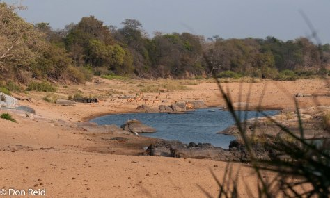 River Scene, Timbavati Road