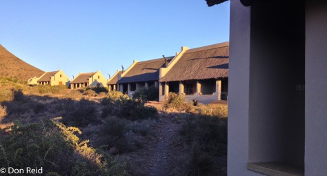 Karoo Natl Park-6