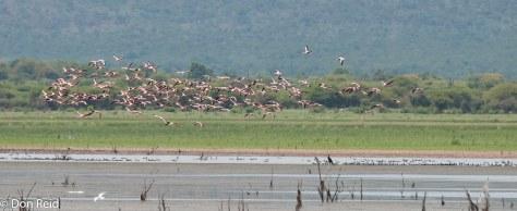 Mkhombo Dam