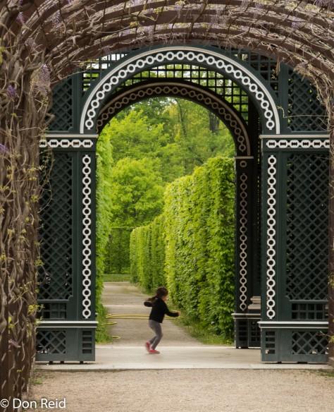 Vienna - Schoenbrunn Palace Gardens