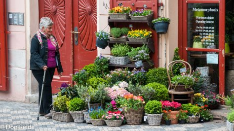 Prague - Florist shop