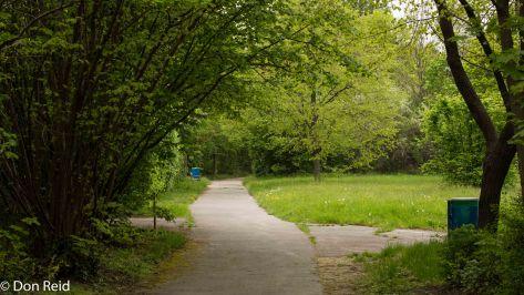 The riverside parklands