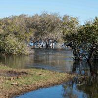 Kasane, Botswana - Seboba Nature Park