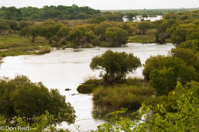View from deck over Chobe River