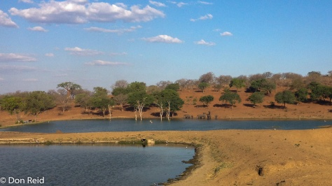 Kasane water treatment works - elephants drinking in the distance!