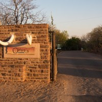 A Week in Olifants - The camp and short drives