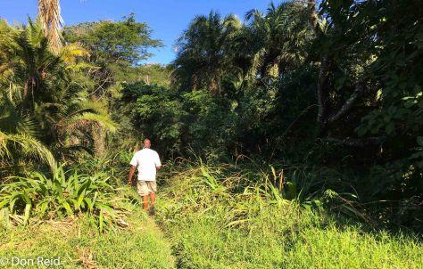 Amitigulu Nature Reserve