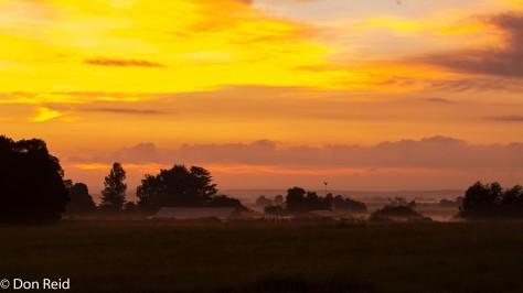 Early morning, Delmas area