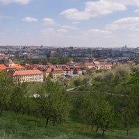Czech it out - Prague : Hills and a Palace