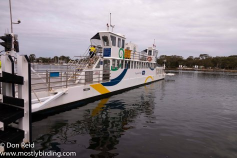 Ferry, Paynesville & Raymond Island, Victoria